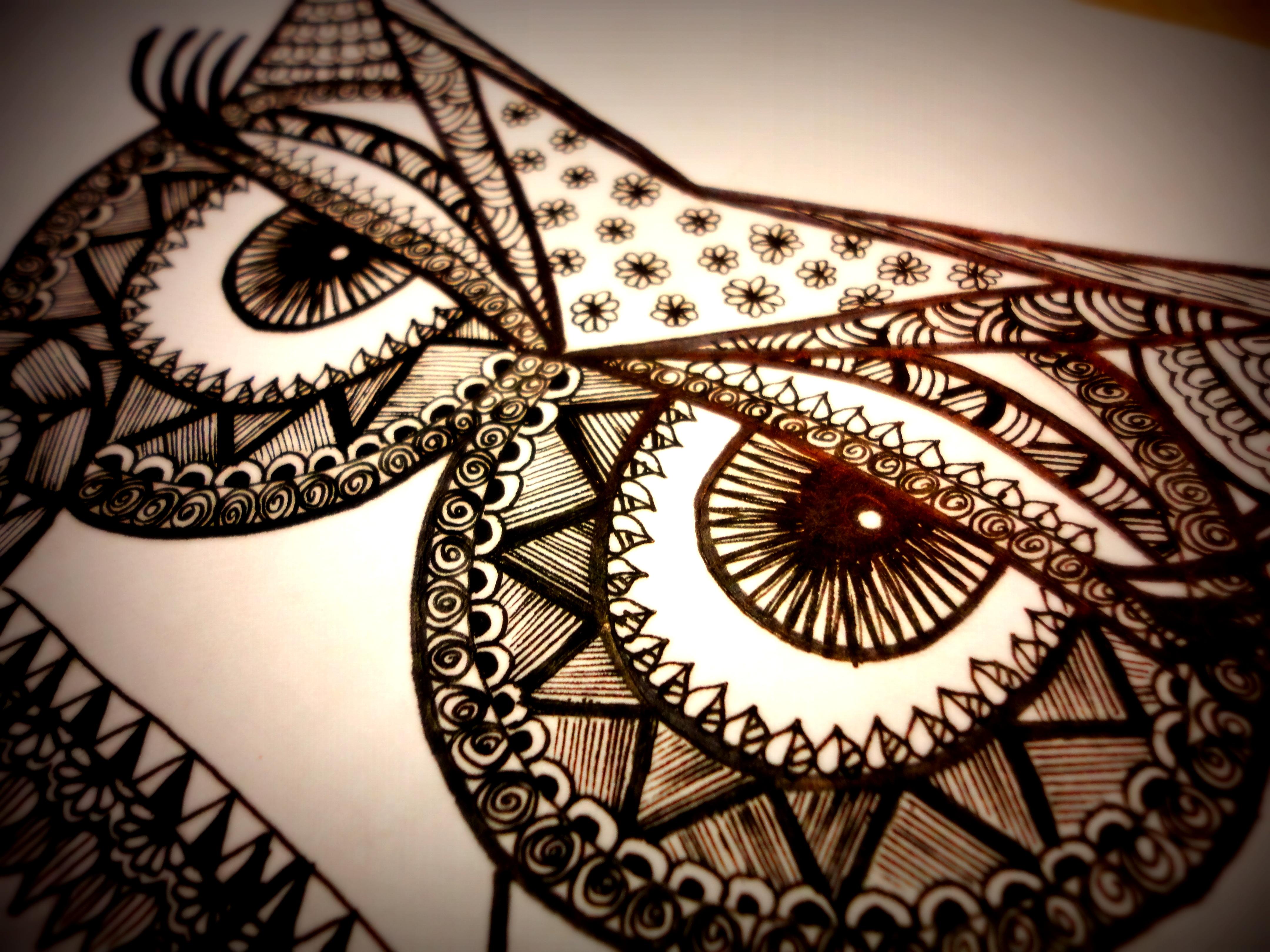 Owl Sketch Studio